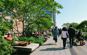 University of New South Wales research students are urging regulators to properly consider green infrastructure when setting charges for new property developments.