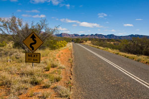 All VIC regional councils receive funding under country roads program