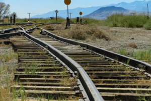 Labor to conduct Inland Rail inquiry