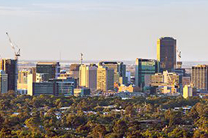 Chair of Infrastructure SA appointed