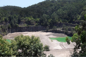 Milestone reached on Hornsby Quarry rehabilitation