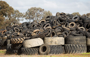 Six new local governments join Tyre Stewardship Australia